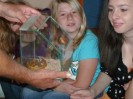 Reptilienschau 2012 9