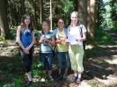 Schacherwald - Juni 11 20