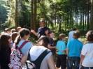 Schacherwald - Juni 11 8