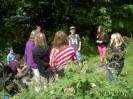 Waldspiel der 2 Klassen 4